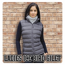Picture of Ladies Ice Bird Gilet